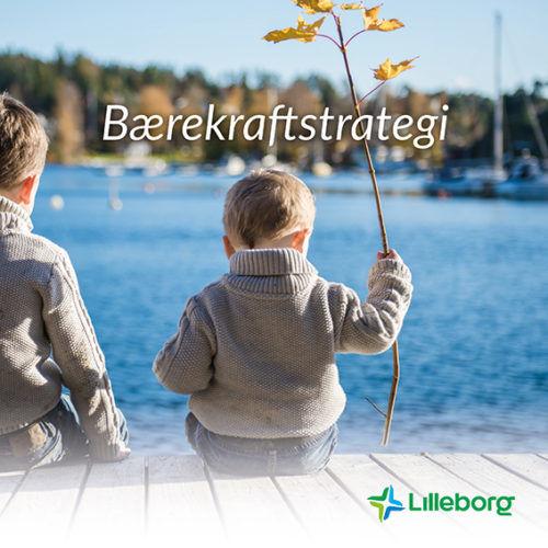 Bærekraftsbrosjyre_forside2017_Lilleborg, Orkla.
